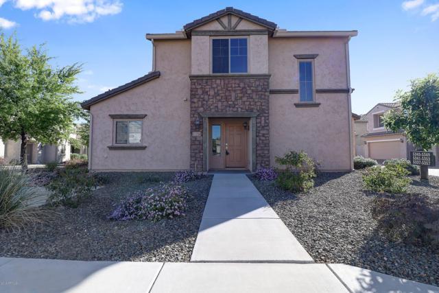 5337 W Molly Lane, Phoenix, AZ 85083 (MLS #5878357) :: Yost Realty Group at RE/MAX Casa Grande