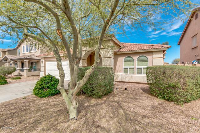 17452 W Caribbean Lane, Surprise, AZ 85388 (MLS #5881343) :: CC & Co. Real Estate Team