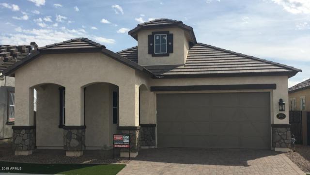 10057 E Nopal Avenue, Mesa, AZ 85209 (MLS #5884760) :: Yost Realty Group at RE/MAX Casa Grande