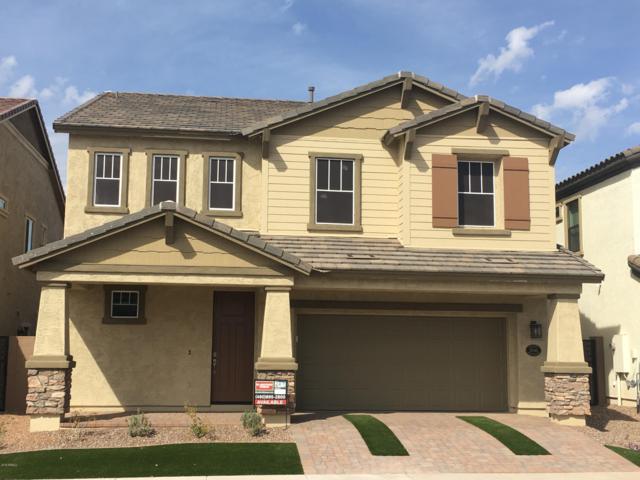 10046 E Naranja Avenue, Mesa, AZ 85209 (MLS #5884981) :: Yost Realty Group at RE/MAX Casa Grande