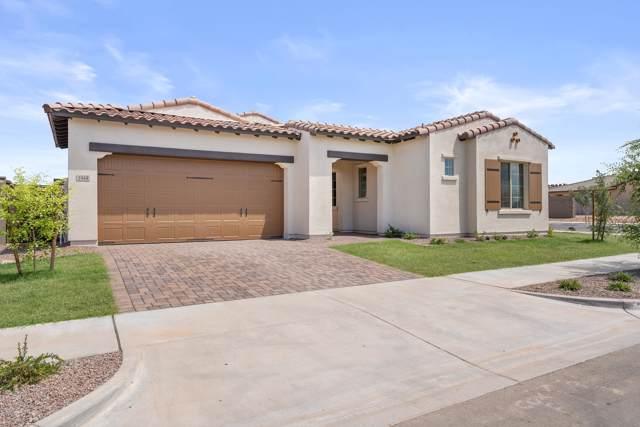 1944 W Union Park Drive, Phoenix, AZ 85085 (MLS #5885426) :: The Laughton Team