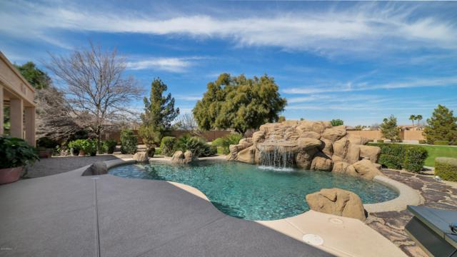 16364 W Durango Street, Goodyear, AZ 85338 (MLS #5887126) :: Phoenix Property Group