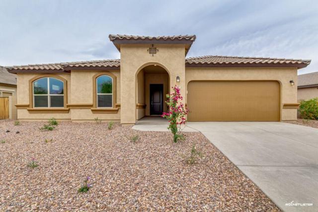 19179 N Piccolo Drive, Maricopa, AZ 85138 (MLS #5888217) :: Revelation Real Estate