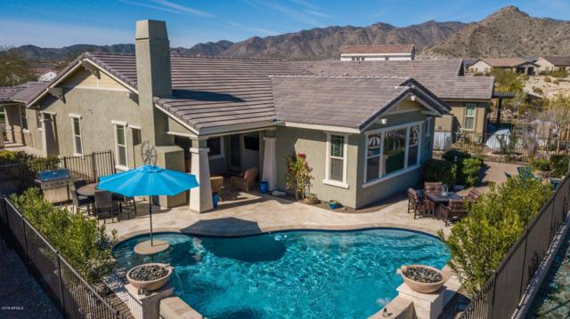 20664 W Colina Court, Buckeye, AZ 85396 (MLS #5888503) :: Yost Realty Group at RE/MAX Casa Grande