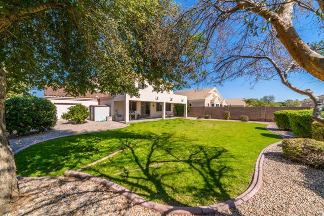 10365 E Idaho Avenue, Mesa, AZ 85209 (MLS #5889061) :: CC & Co. Real Estate Team