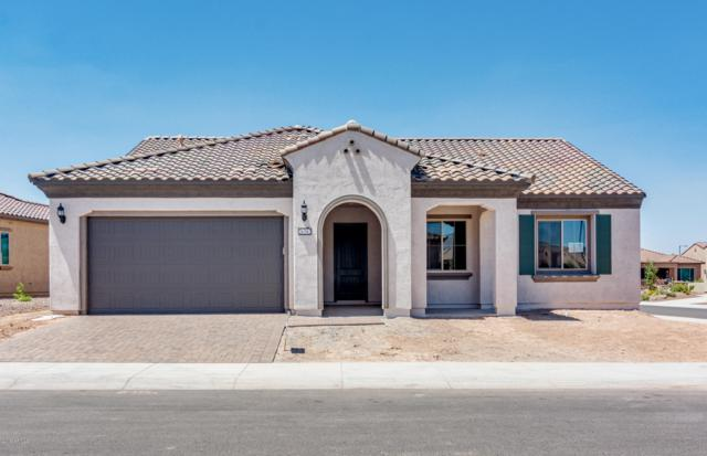 26382 W Abraham Lane, Buckeye, AZ 85396 (MLS #5889438) :: The Property Partners at eXp Realty