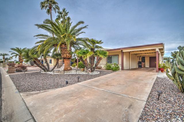 8936 E Michigan Avenue, Sun Lakes, AZ 85248 (MLS #5889469) :: Occasio Realty