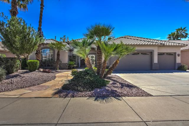 945 W Beechnut Drive, Chandler, AZ 85248 (MLS #5889922) :: Yost Realty Group at RE/MAX Casa Grande
