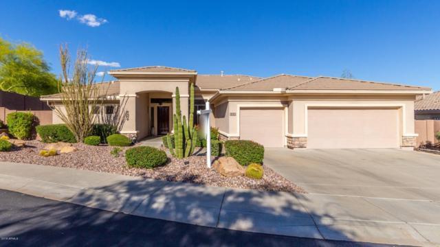 42413 N Long Cove Way, Anthem, AZ 85086 (MLS #5890256) :: Revelation Real Estate