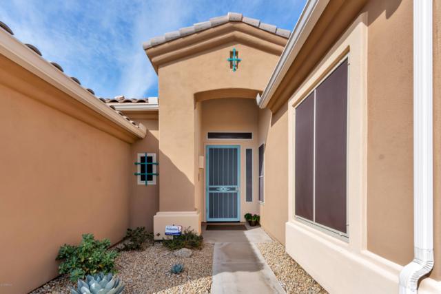 24544 N 74th Place, Scottsdale, AZ 85255 (MLS #5890444) :: CC & Co. Real Estate Team