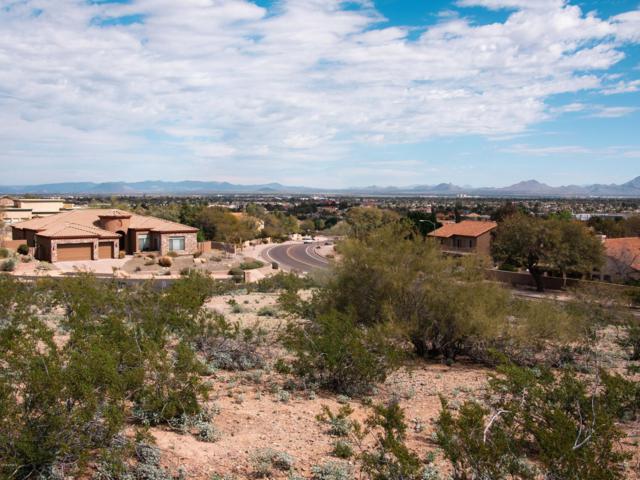 13834 N 28TH Street, Phoenix, AZ 85032 (MLS #5890728) :: RE/MAX Excalibur
