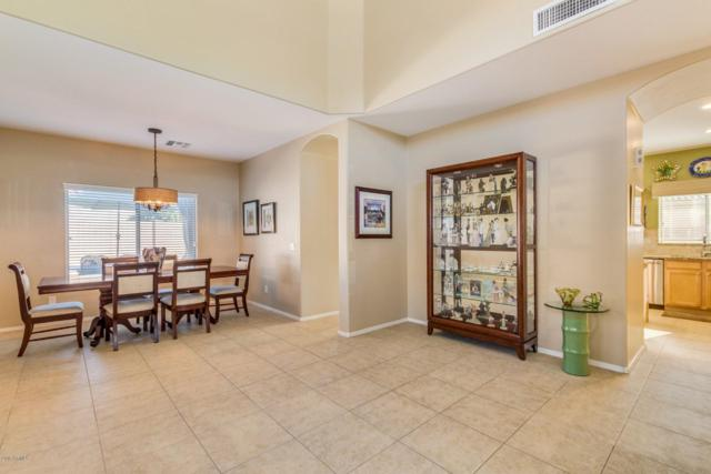 16226 W Maui Lane, Surprise, AZ 85379 (MLS #5891982) :: Lucido Agency