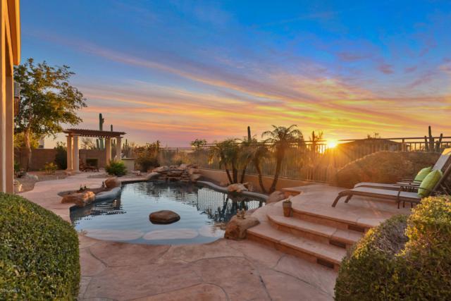 16558 N 109TH Street, Scottsdale, AZ 85255 (MLS #5892488) :: Yost Realty Group at RE/MAX Casa Grande