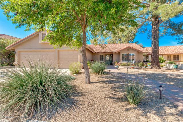 5352 E Enrose Circle, Mesa, AZ 85205 (MLS #5893290) :: Yost Realty Group at RE/MAX Casa Grande