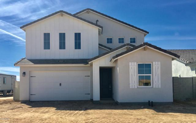 612 E Hazelnut Lane, San Tan Valley, AZ 85140 (MLS #5893744) :: Yost Realty Group at RE/MAX Casa Grande