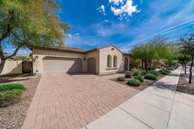 3695 S Posse Trail, Gilbert, AZ 85297 (MLS #5894162) :: CC & Co. Real Estate Team