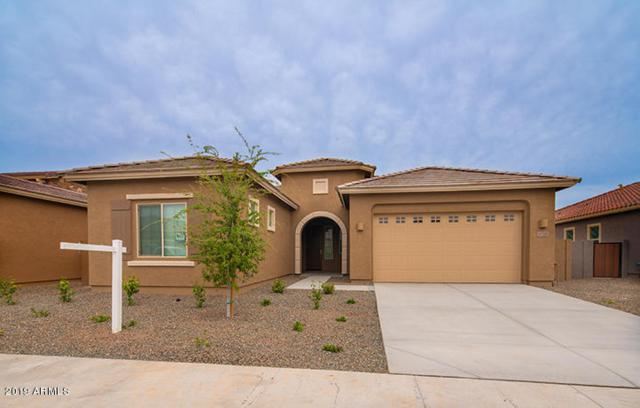 21528 E Pecan Court, Queen Creek, AZ 85142 (MLS #5895409) :: Kepple Real Estate Group
