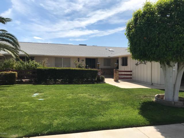 10426 W Tropicana Circle, Sun City, AZ 85351 (MLS #5895945) :: Yost Realty Group at RE/MAX Casa Grande