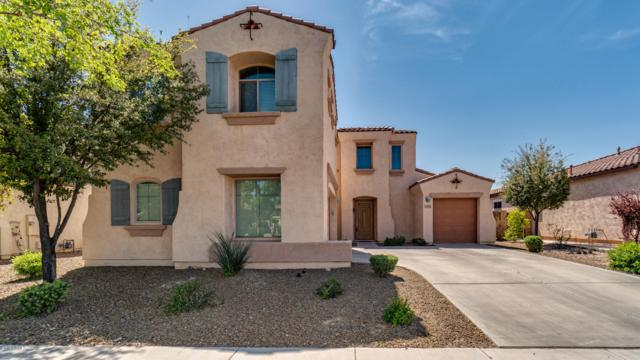 637 E Indian Wells Place, Chandler, AZ 85249 (MLS #5897133) :: Occasio Realty
