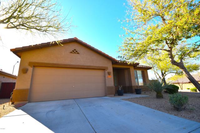 8568 W Maya Drive, Peoria, AZ 85383 (MLS #5897182) :: Yost Realty Group at RE/MAX Casa Grande