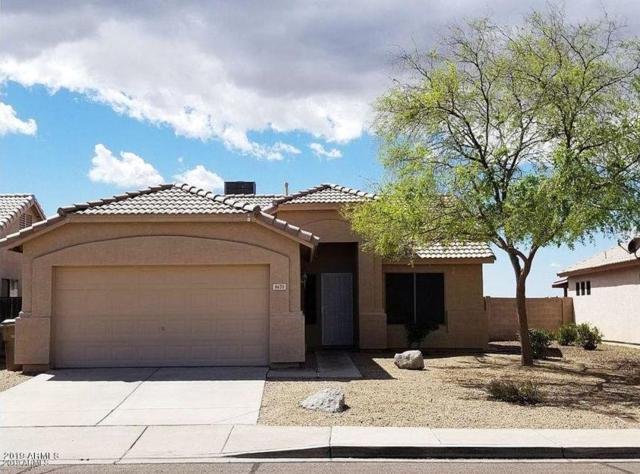 8670 N 114TH Avenue, Peoria, AZ 85345 (MLS #5898367) :: The Everest Team at My Home Group