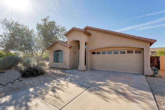 2503 W Blue Sky Drive, Phoenix, AZ 85085 (MLS #5899211) :: Yost Realty Group at RE/MAX Casa Grande