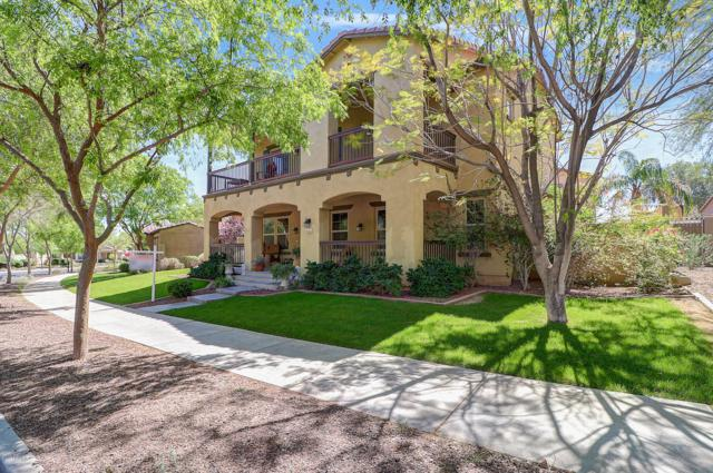 20445 W Springfield Street, Buckeye, AZ 85396 (MLS #5901661) :: The Results Group