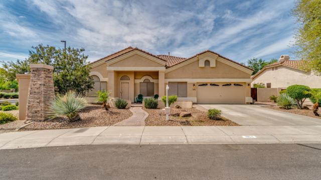 1964 S Marble Street, Gilbert, AZ 85295 (MLS #5902002) :: Revelation Real Estate