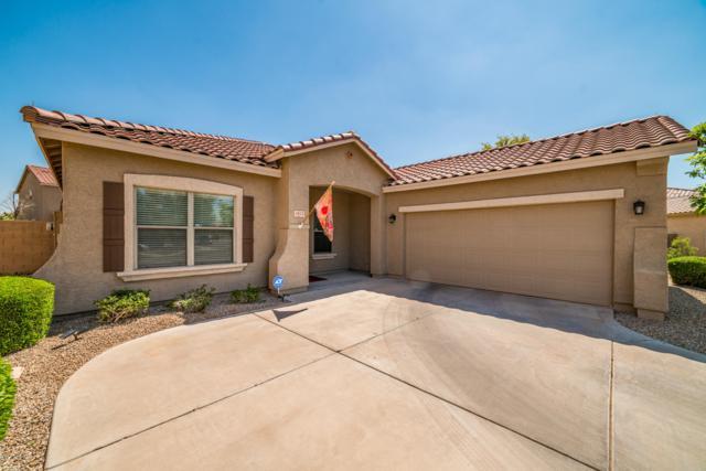 4815 S 24TH Avenue, Phoenix, AZ 85041 (MLS #5903944) :: Yost Realty Group at RE/MAX Casa Grande