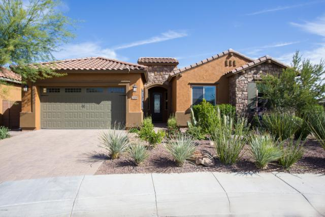 2508 W Desert Marigold Drive, Phoenix, AZ 85085 (MLS #5904242) :: CC & Co. Real Estate Team