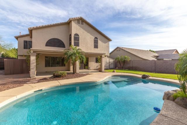 1730 E Rose Garden Lane, Phoenix, AZ 85024 (MLS #5904846) :: Yost Realty Group at RE/MAX Casa Grande