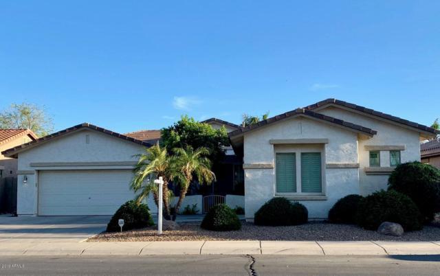 675 W Longhorn Drive, Chandler, AZ 85286 (MLS #5905409) :: Yost Realty Group at RE/MAX Casa Grande