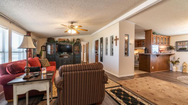 5075 E Vista Grande, San Tan Valley, AZ 85140 (MLS #5905989) :: Scott Gaertner Group