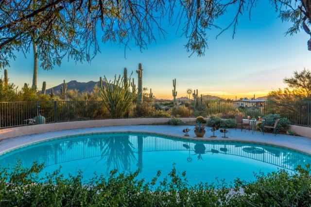 6940 E Arroyo Road, Cave Creek, AZ 85331 (MLS #5907455) :: Yost Realty Group at RE/MAX Casa Grande