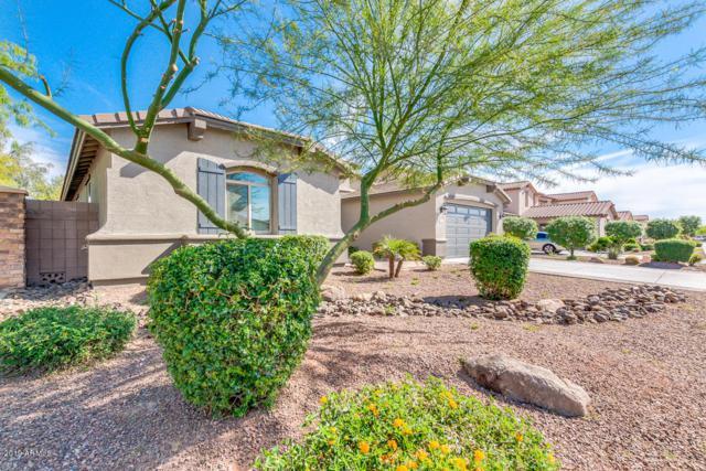 2466 E Aris Drive, Gilbert, AZ 85298 (MLS #5907562) :: Kortright Group - West USA Realty