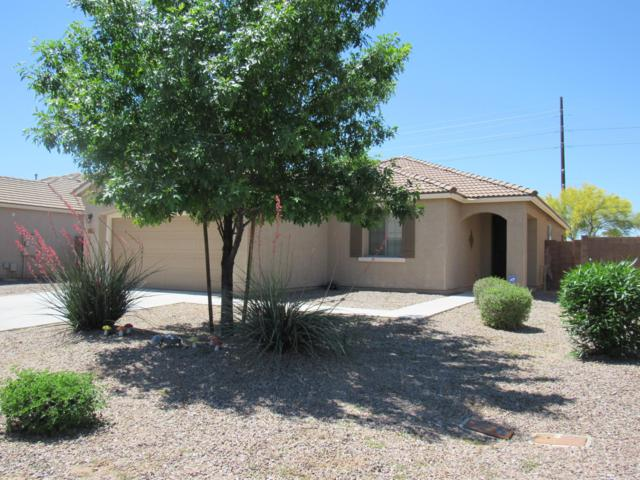 35322 N Murray Grey Drive, San Tan Valley, AZ 85143 (MLS #5908995) :: Riddle Realty