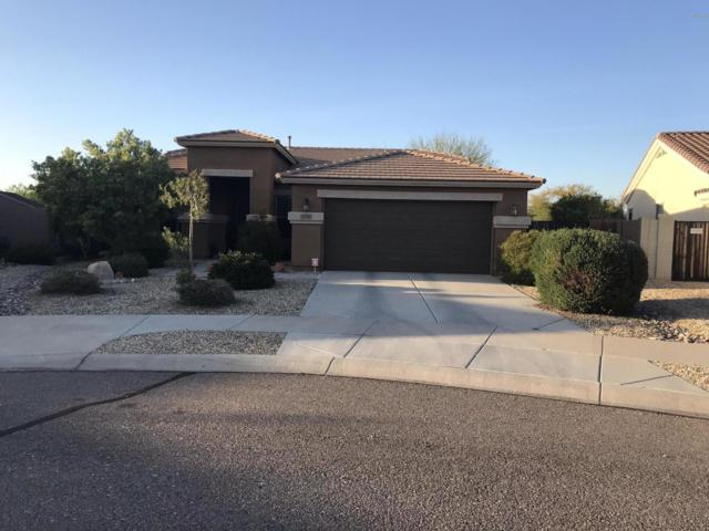 17658 W Dahlia Drive, Surprise, AZ 85388 (MLS #5910014) :: Scott Gaertner Group