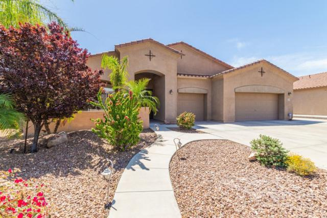 9743 W Hedge Hog Place, Peoria, AZ 85383 (MLS #5910360) :: Yost Realty Group at RE/MAX Casa Grande