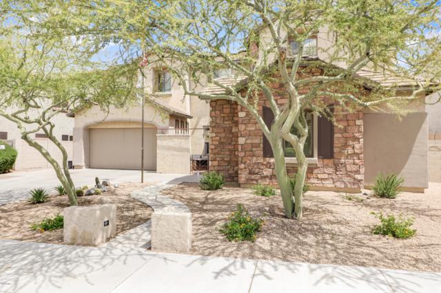 26913 N 89TH Drive, Peoria, AZ 85383 (MLS #5910917) :: Yost Realty Group at RE/MAX Casa Grande