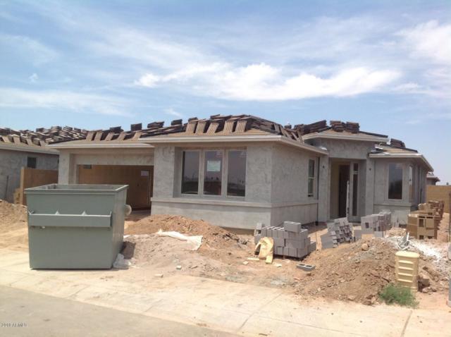 1506 W Sonoqui Boulevard, Queen Creek, AZ 85140 (MLS #5910976) :: Revelation Real Estate