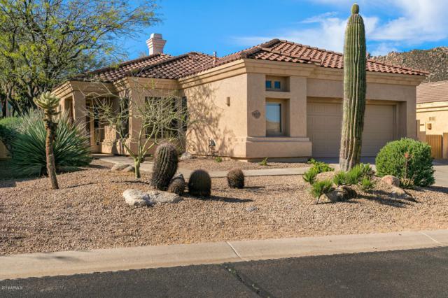 11555 E Diamond Cholla Drive, Scottsdale, AZ 85255 (MLS #5911121) :: Riddle Realty
