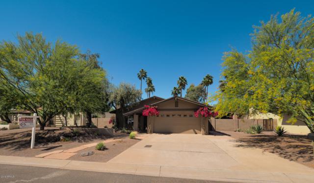 320 W Cardeno Circle, Litchfield Park, AZ 85340 (MLS #5911155) :: The Garcia Group