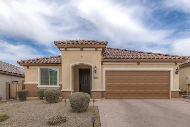 2316 W Brookhart Way, Phoenix, AZ 85085 (MLS #5912602) :: The Ford Team