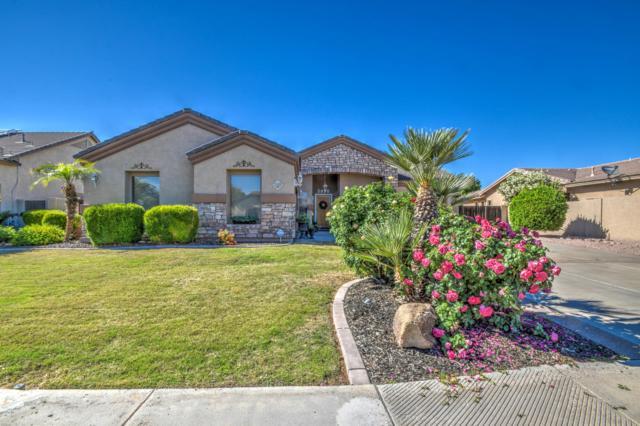 2938 E Huber Street, Mesa, AZ 85213 (MLS #5913689) :: Occasio Realty