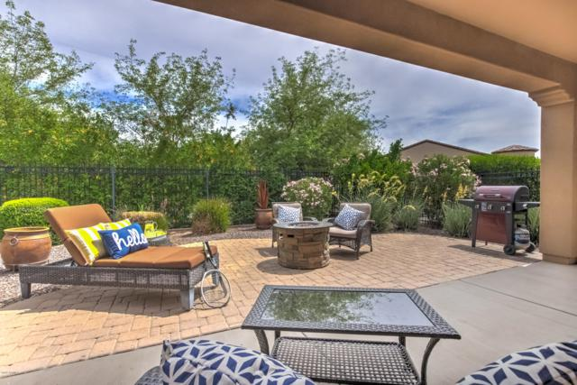 1580 E Sweet Citrus Drive, San Tan Valley, AZ 85140 (MLS #5913765) :: CC & Co. Real Estate Team