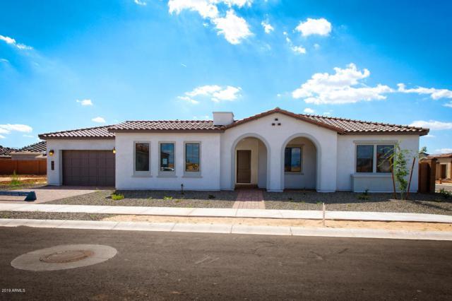 19428 S 210TH Place, Queen Creek, AZ 85142 (MLS #5914011) :: Arizona 1 Real Estate Team