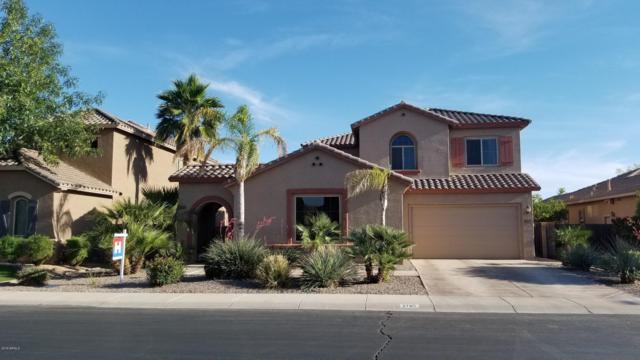 2785 E Honeysuckle Place, Chandler, AZ 85286 (MLS #5914499) :: The Kenny Klaus Team