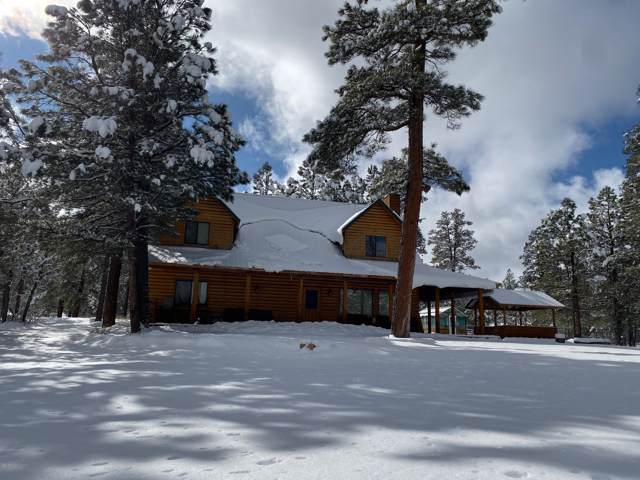 2458 Forest Service 317B Road, Happy Jack, AZ 86024 (MLS #5917517) :: The Kenny Klaus Team