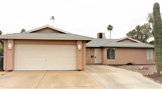 10216 W Turney Avenue, Phoenix, AZ 85037 (MLS #5918447) :: CC & Co. Real Estate Team