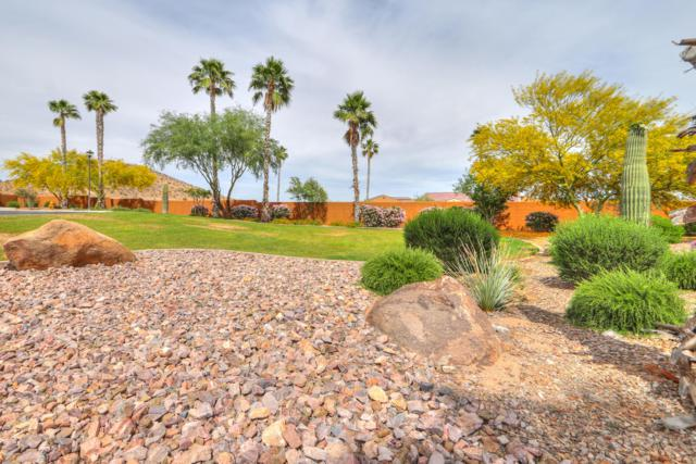 4728 W Cherry Oaks Drive, Eloy, AZ 85131 (MLS #5920615) :: Yost Realty Group at RE/MAX Casa Grande